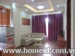 Serviced apartment for rent on Phan Huy Chu
